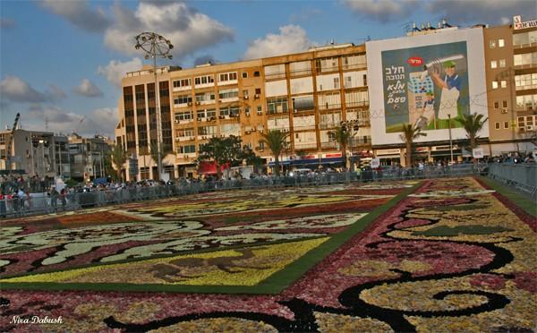 Flower Carpet in Tel -Aviv