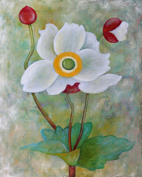 white poppie
