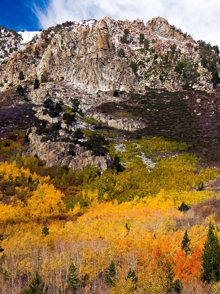 High Mountain Colors