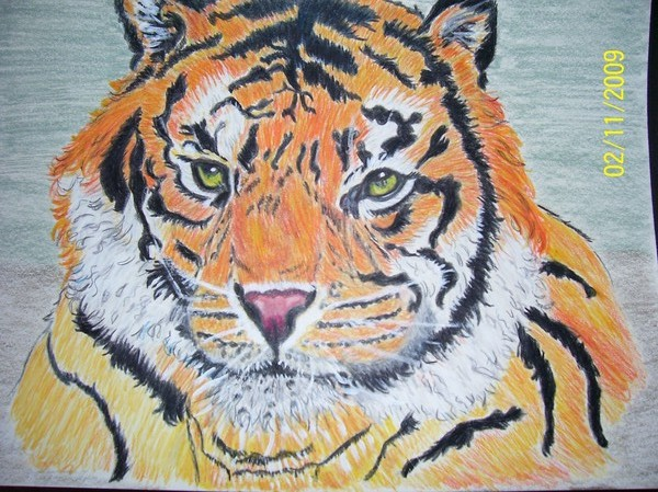 Tiger,another earlier work