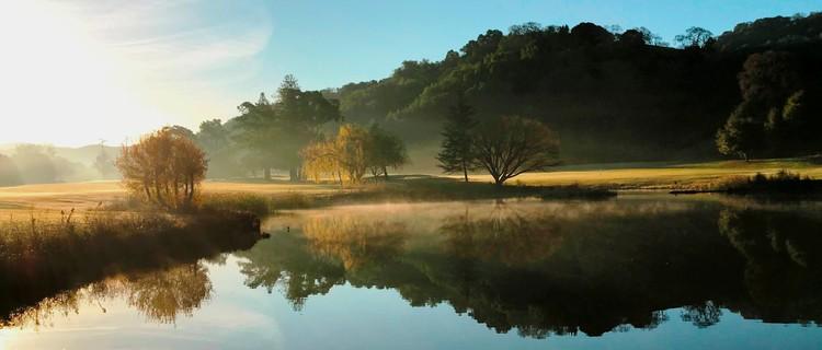 Pond on #9 Dawn - December 2017