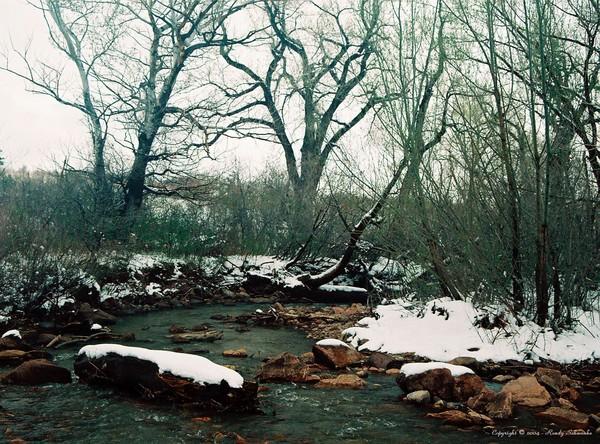 Natures Blanket