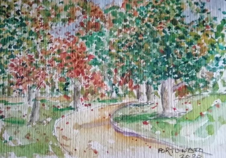 Outono no Parque