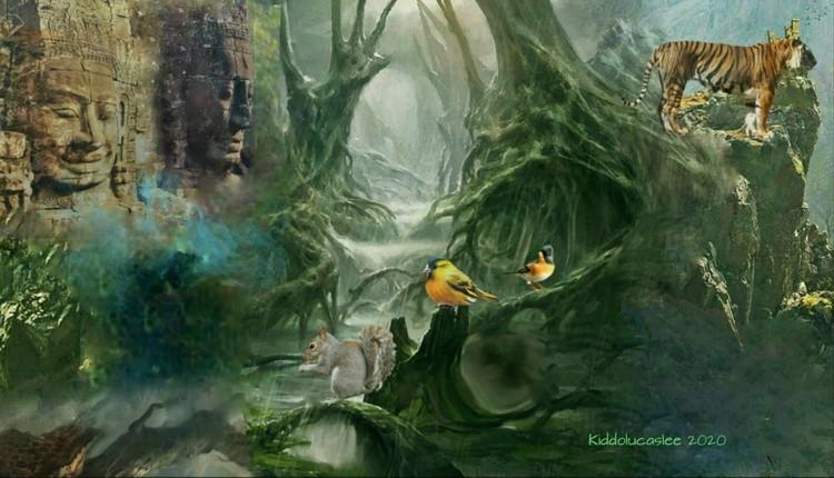 The Lost Meditative Path * 2020 Kiddolucaslee