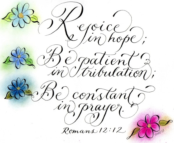 Colorful daisies and Inspirational verse Romans 12
