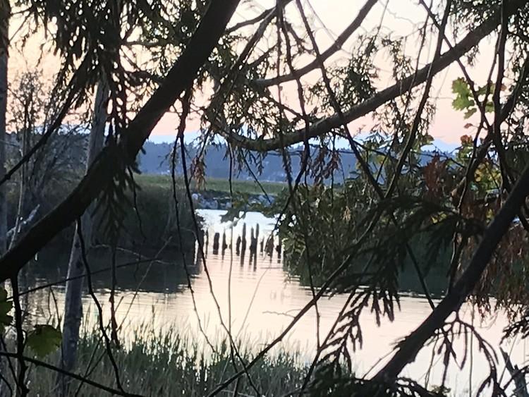 Nicomekl River