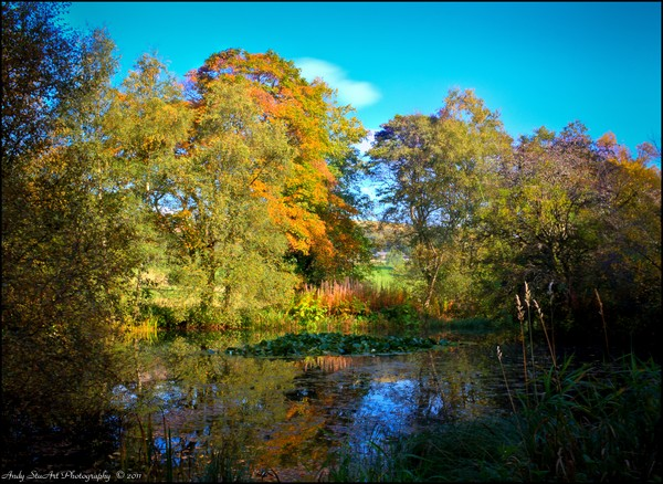 Autumn Colour At The Boating Lake