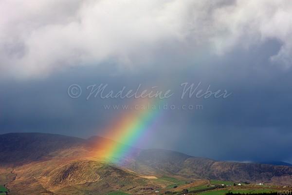 • Somewhere under the rainbow  ( ;