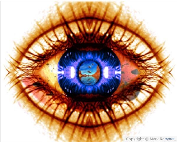 Eye See Them