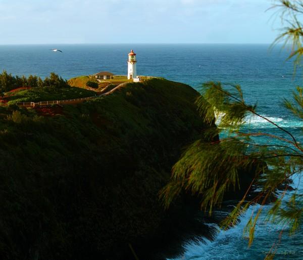 Kilauea Lighthouse 1- fine art photographic print