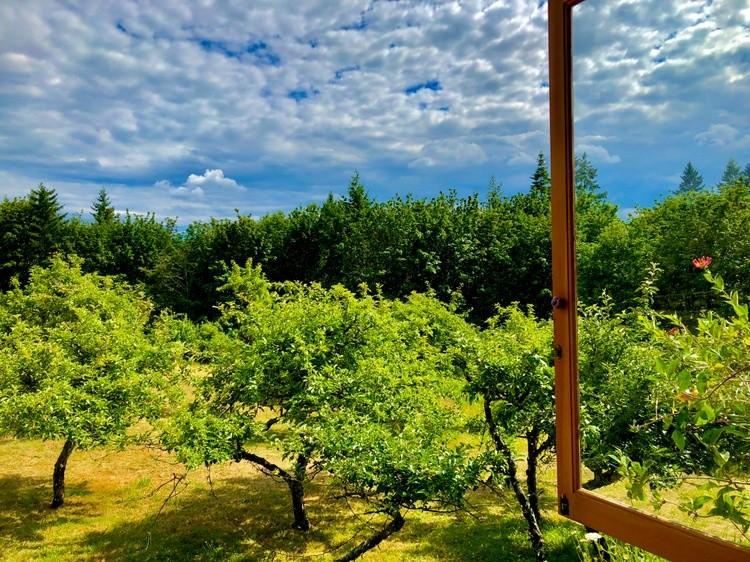 Merridale Cider Orchard