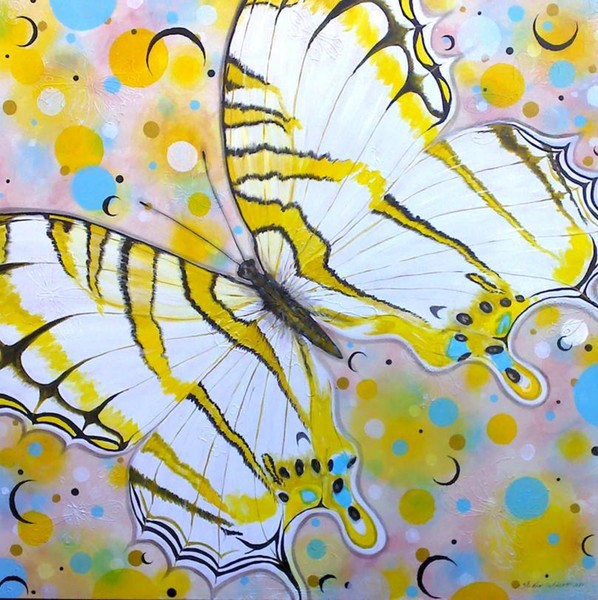 Cyrestis Butterfly Upon Crescents