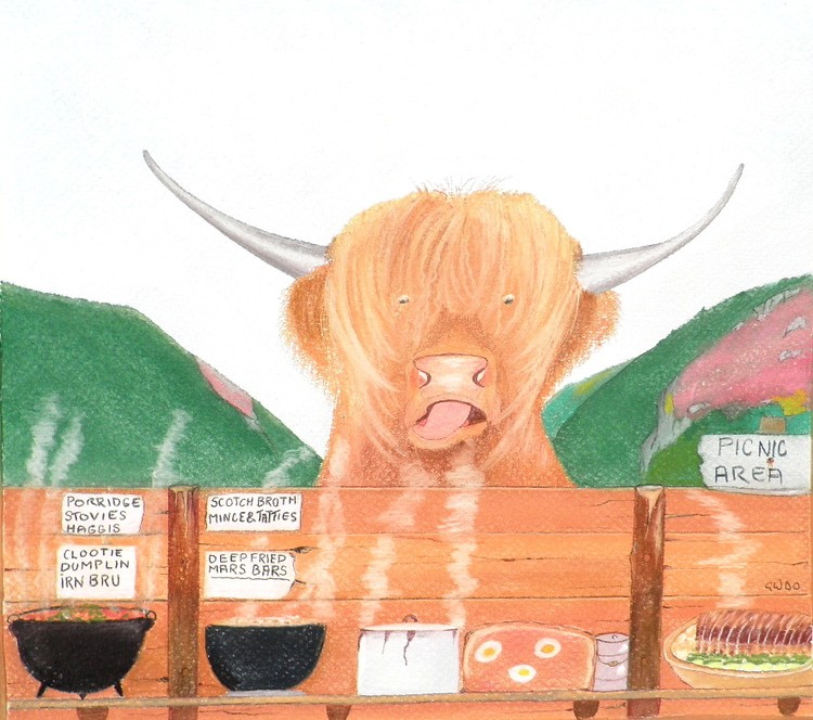THE HEILAND COO Highland Cow