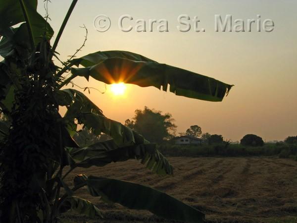 Sunset in Sukhothai Province