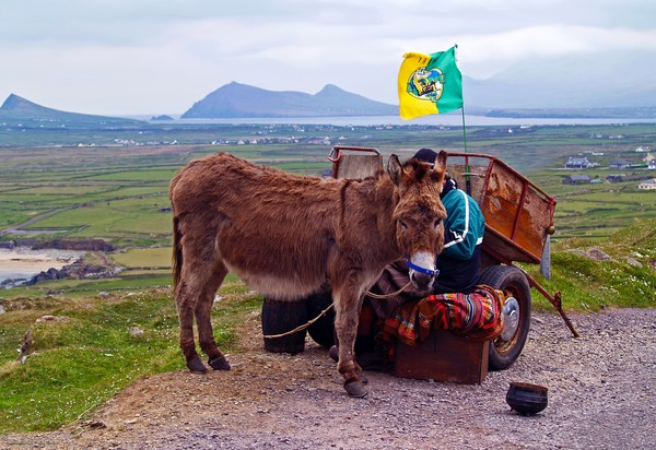 Would You Like a Ride in Ireland