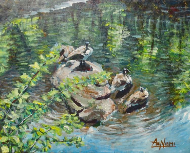 Coggshall Geese Sunbathing