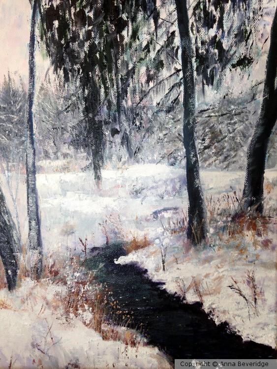 Through the Frozen Field
