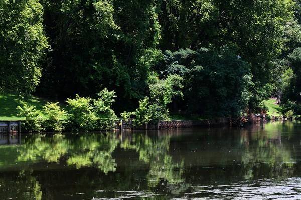 Reflections of Shreveport