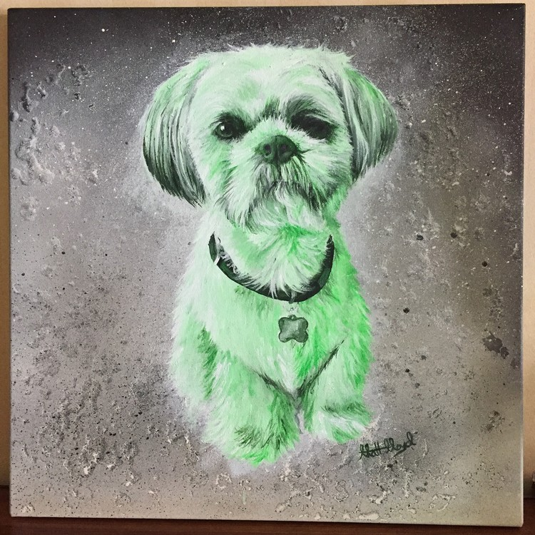 Chester (green) Shih Tzu