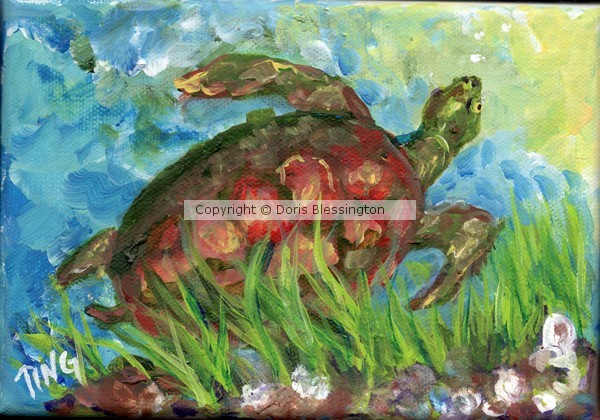 Tybee Turtle in Marsh   mini #5