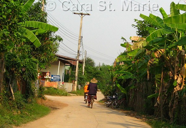 Bicyclists in Sukhothai