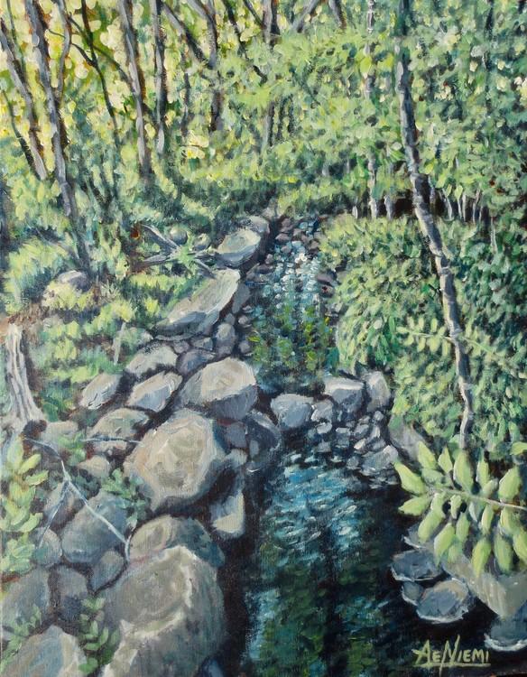 Saima Park Brook