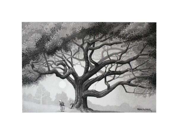 Under a Tree in Carmel