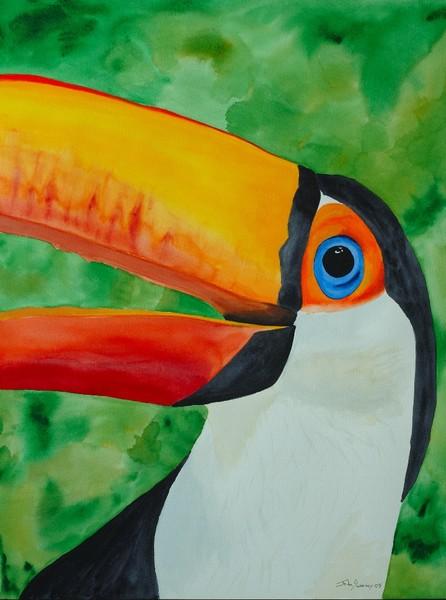 Talking Toucan