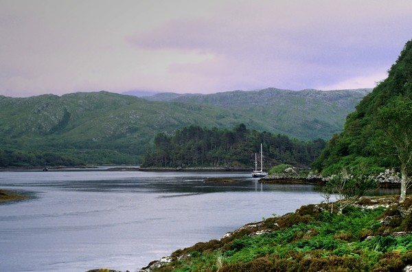Loch Moidart Entrance