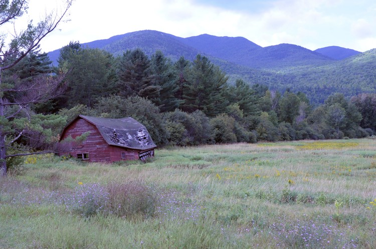 Old Red Barn in Summer