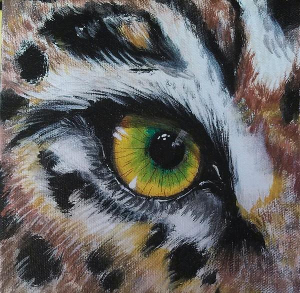 Eye of the Cheetah Quatre