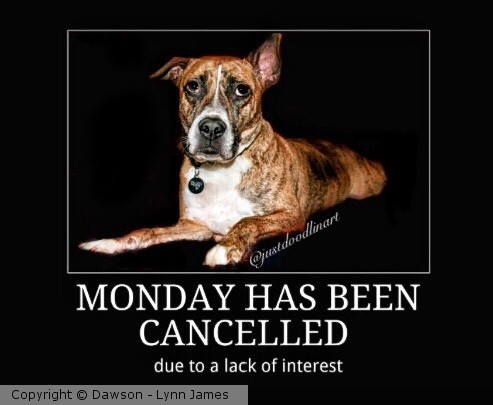 Monday has been cancelled