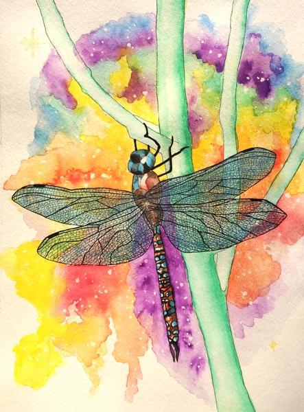 Blue-Eyed Darnier Dragonfly