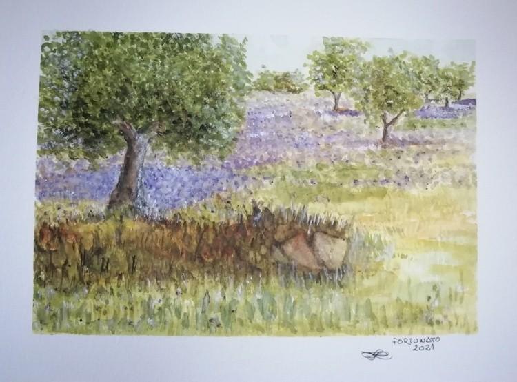 Primavera no campo