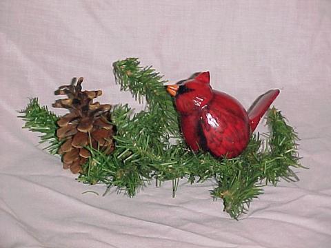 Gourd Cardinal
