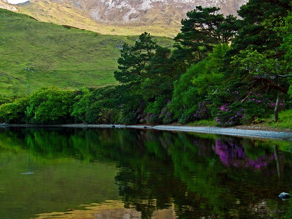 Across From Kylemore Abbey- Fine art print