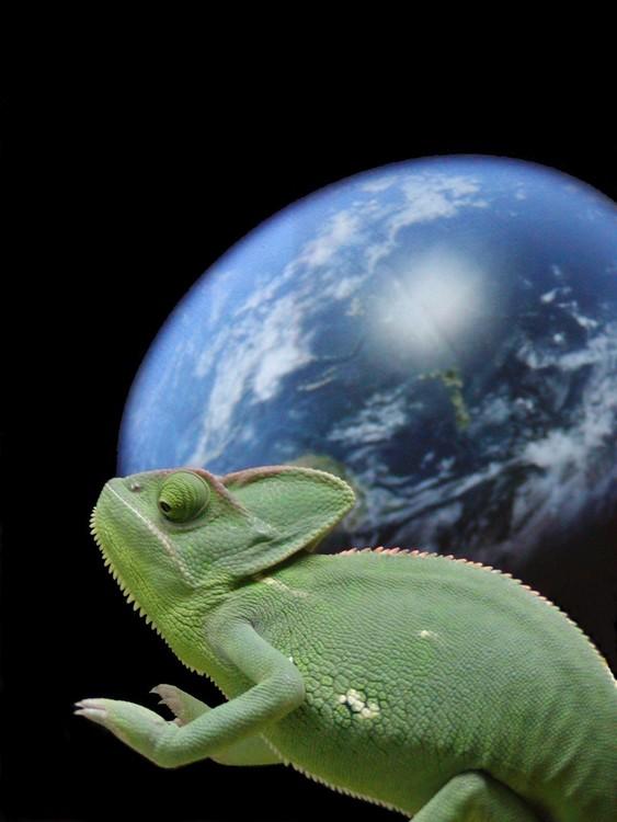 Cham-Alien