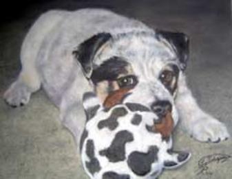 Portrait of puppy, Duke