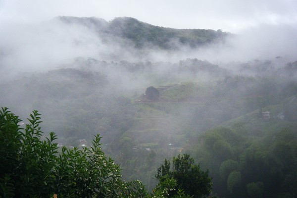 Mist Over Comerio Mountains