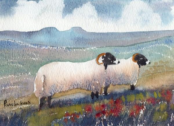 Sheep on welsh hillside