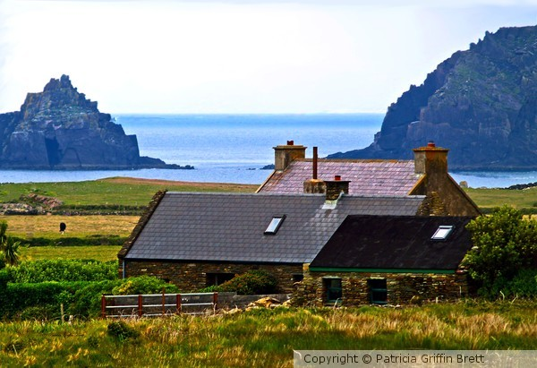 A House in Ireland