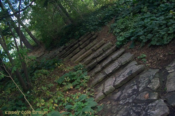 Steps 002