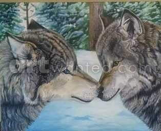 wolves tender touch