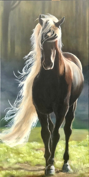 Horse in warm sun - oil painting on stretched canvas