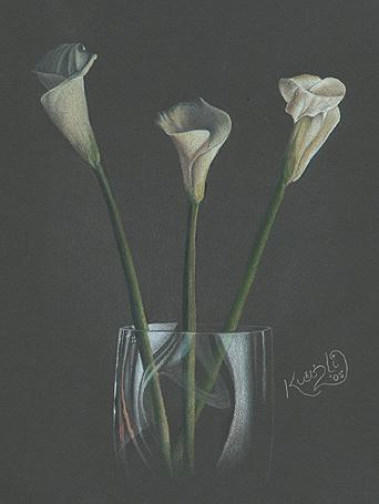 Calla Lillies in a Glass Vase