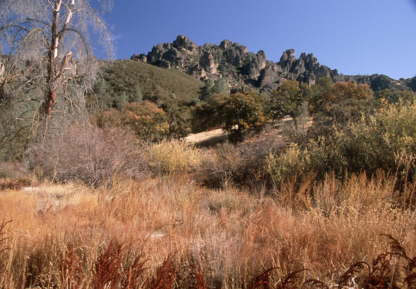 The Pinnacles Autumn Colors 1