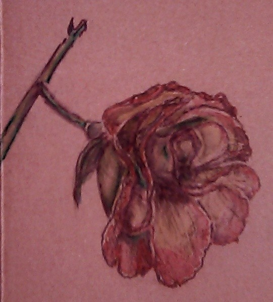 Pink and Yellow Rose Watercolor