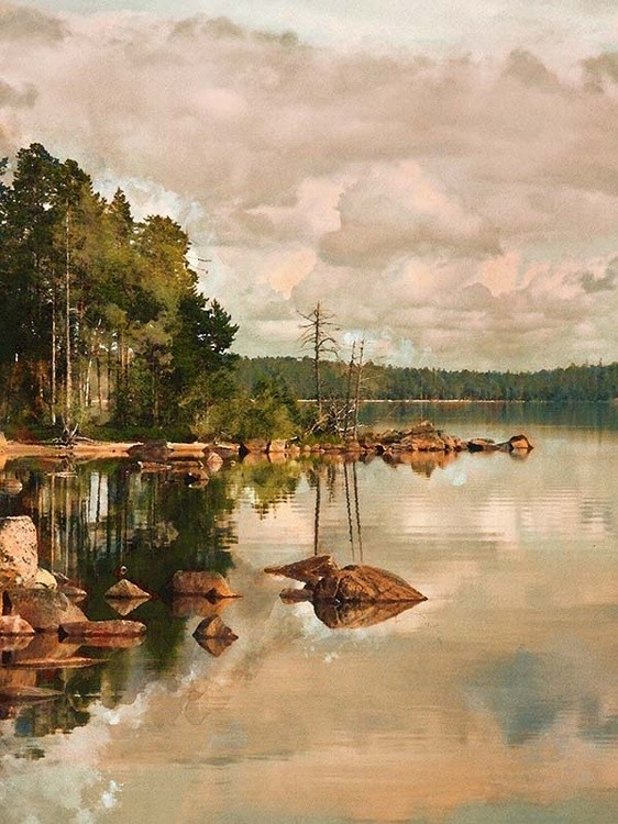 Cloudy Morning at the Lake