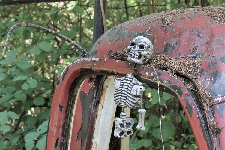 skull in door