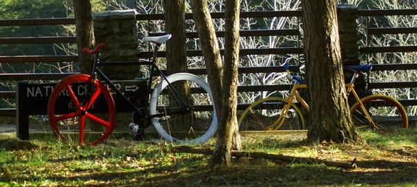 Bike Trailin